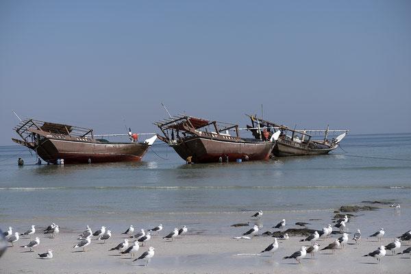 dümpelnde Dhaus bei Sur Oman