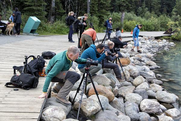 Fotografen am Lake Louise Alberta Kanada