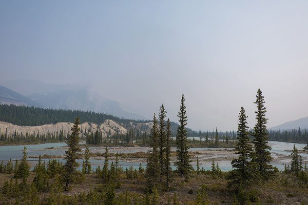 Fluss am Icefields Parkway Alberta Kanada