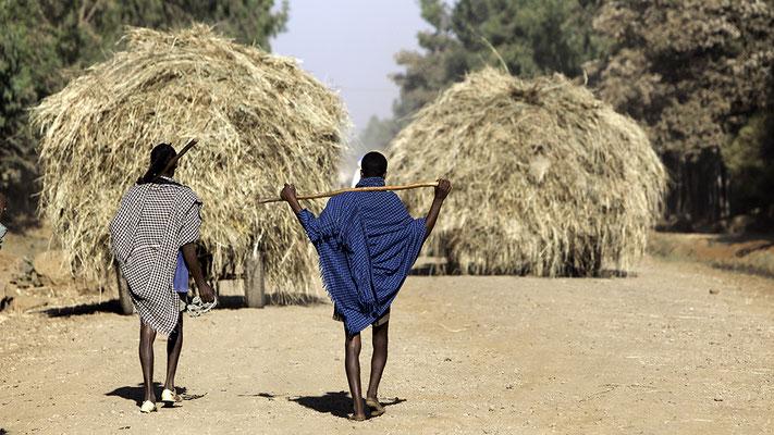 Bauern bei Bahir Dar Äthiopien