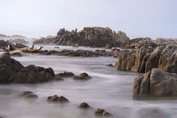 Strand bei Pacific Grove