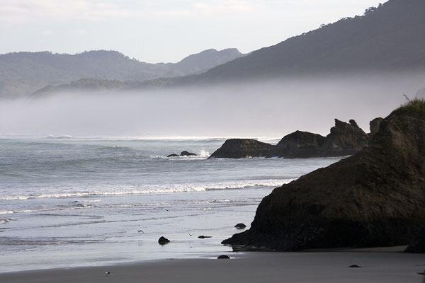 Westküste Südinsel, Neuseeland