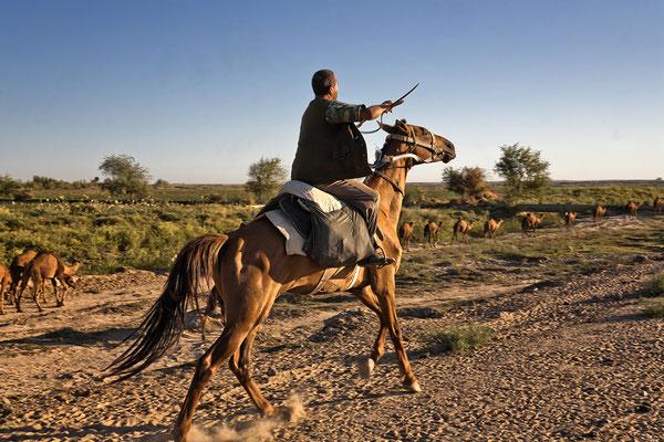 Reiter in der Wüste Karakum Turkmenistan
