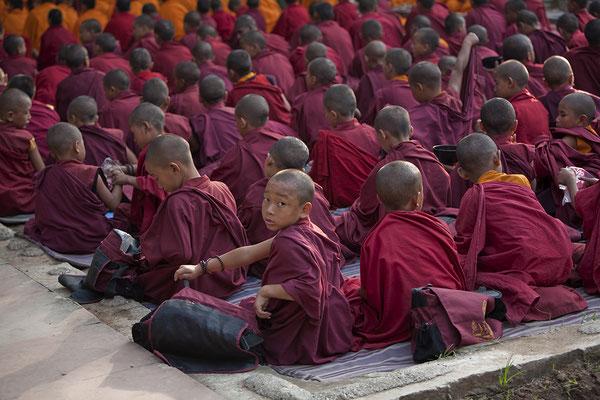 Tibetische Mönche in Bodhgaya im Mahabodhi Tempel Indien