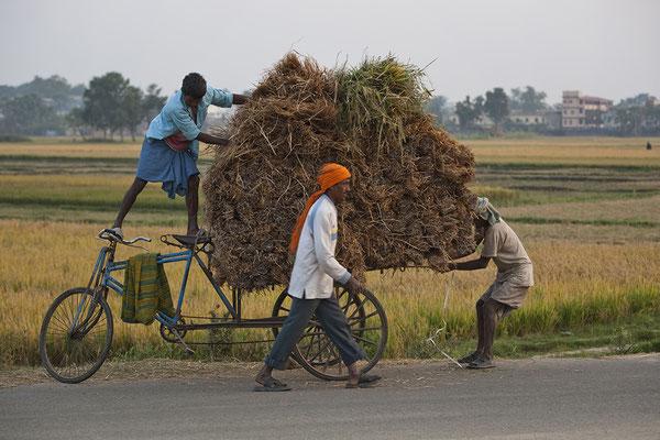 Bauern bei Patna Indien