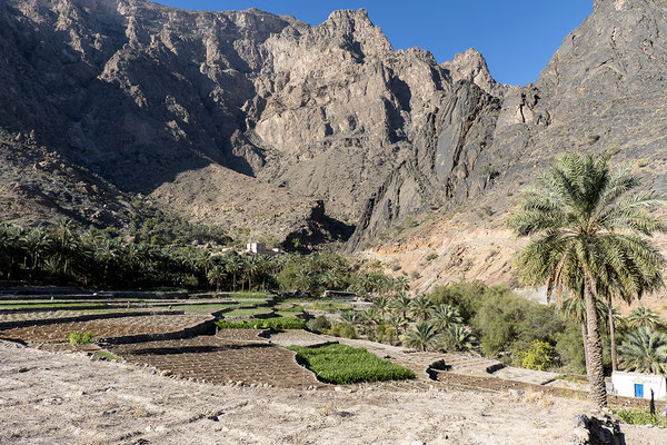 Im Wadi Bani AWF Hadschar-Gebirge, Oman