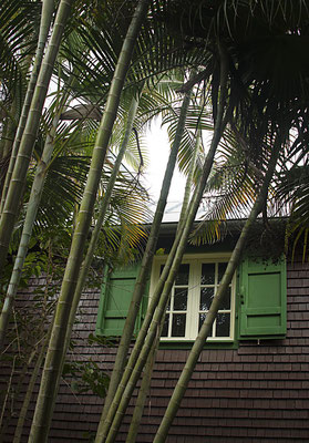 Parc botanique des Mascareignes 5 - St Leu - Ile de la Réunion - Septembre 2016.