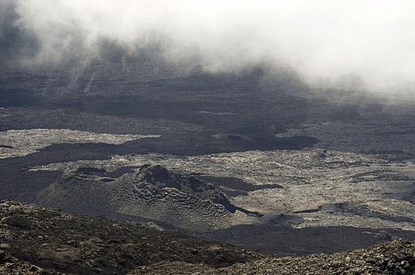 Epouvanté -  Ile de la Réunion - Avril 2016.