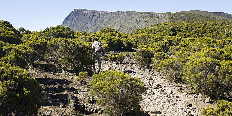 Au loin -  Ile de la Réunion - Mai 2016.