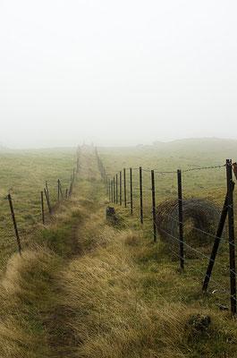 La Plaine des Cafres 5 - Île de la Réunion - Juin 2016.