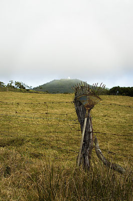 La Plaine des Cafres 3 - Île de la Réunion - Juin 2016.