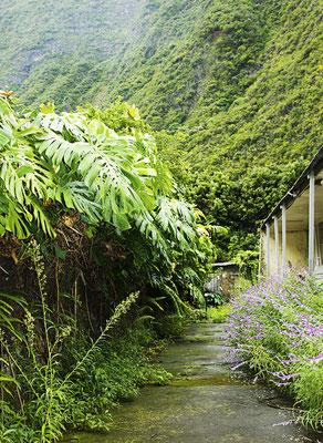 Grand Bassin 2 - Ile de la Réunion - Mars 2017