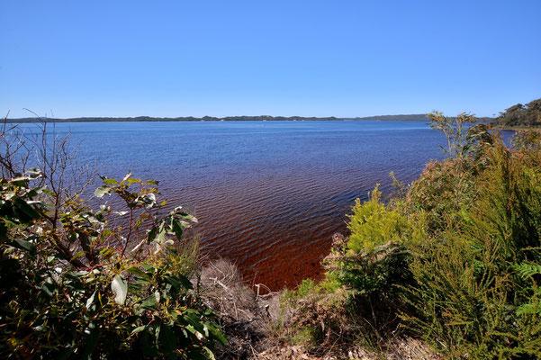 Australien, Australia, Westaustralia, Western Australia, Landschaft, See, Braun, Walpole