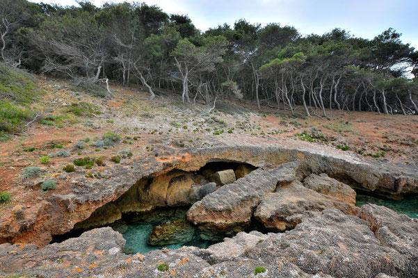 Sardinien, Sardegna, Landschaft, See, Küste, Bucht, Felsen, Parco di Porto Conte / Punta Giglio