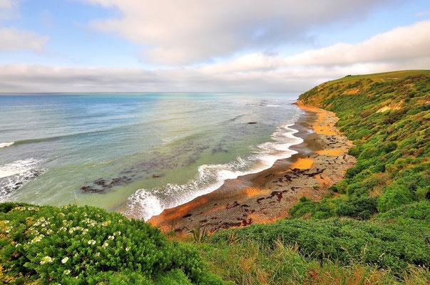 Neuseeland, Südinsel, Küste, Sandstrand