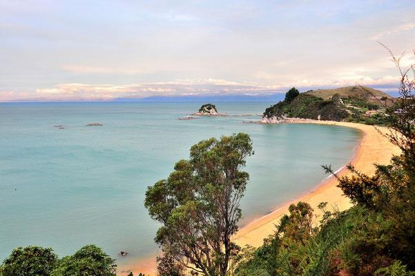 Neuseeland, Südinsel, Wald, Küste, Abel Tasman National Park