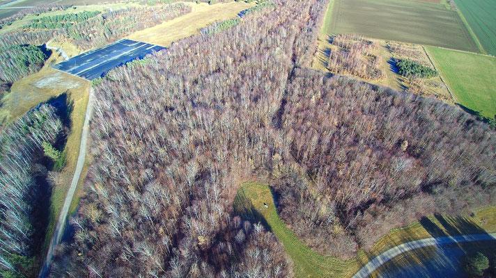 Vogelperspektive, Drohnenfoto, Drohnenbild, Luftaufnahme, Bayern, Feld, Grün, Sommer, München, Riem, Landebahn, Bäume, Wald