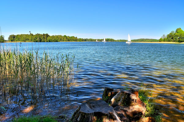 Litauen, Rundreise, Landschaft, See, Trakai