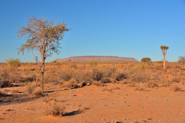 Namibia - Rundfahrt - Reise - Rundreise - Landschaft - Kolmanskuppe