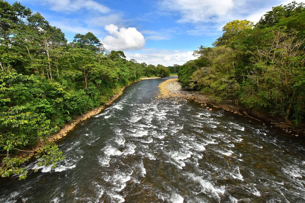 Pura Vida - Costa Rica - Fluß