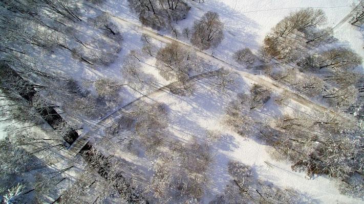 Drohnenfoto - Vogelperspektive - Drohne - Drohnenbild - Luftaufnahme - Wanderweg - Winter - Schnee