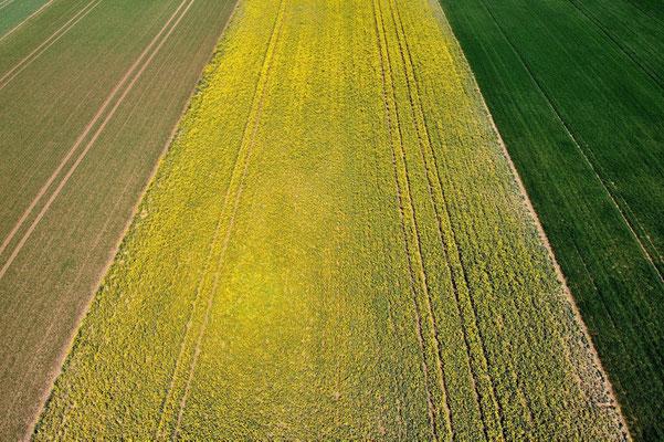 Vogelperspektive, Drohnenfoto, Drohnenbild, Luftaufnahme, Bayern, Feld, Grün, Braun, Gelb, Streifen, Sommer, Land