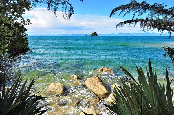 Neuseeland, Südinsel, Wald, Küste, See, Meer, Rahmen, Aussicht, Abel Tasman National Park