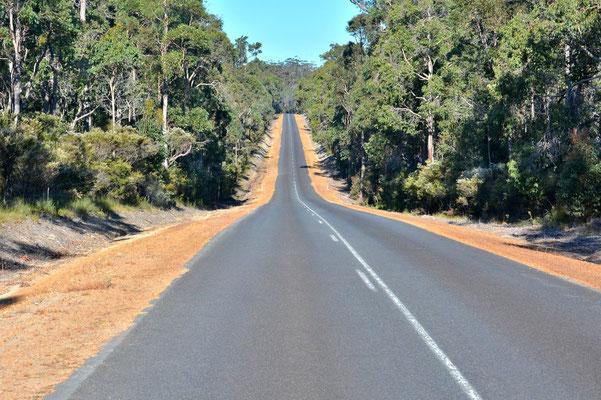 Australien, Australia, Westaustralia, Western Australia, Landschaft, Strasse, Lang