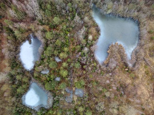 Drohnenfoto - Vogelperspektive - Drohne - Drohnenbild - Luftaufnahme - Winter - See - Isen