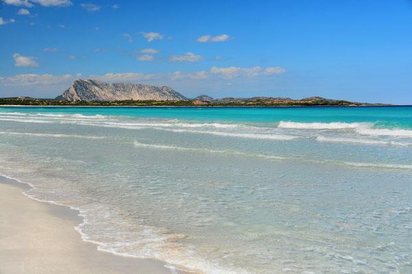 Sardinien, Sardegna, Landschaft, Meer, Sandstrand, San Teodoro