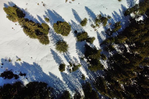 Vogelperspektive, Drohnenfoto, Drohnenbild, Luftaufnahme, Landschaft, Bayern, Alpen, Berge, Wanderung, Winter, Wald, Schatten, Schnee