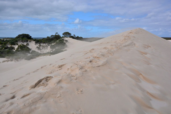 Australien, Australia, South Australia, Kangaroo Island, Landschaft, Meer, Sanddünen, Little Sahara