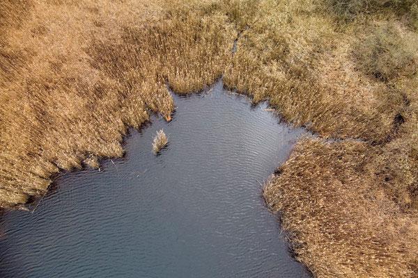 Drohnenfoto - Landschaft - Vogelperspektive - Drohne - Drohnenbild - Herbst - Luftaufnahme - See - Muster - Schilf - Pähl - Hochschloßweiher