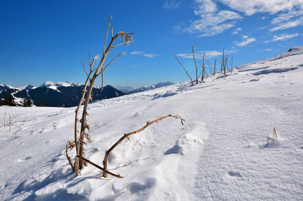 Bayern, Alpen, Berge, Landschaft, Aussicht, Panorama, Wanderung, Wallberg