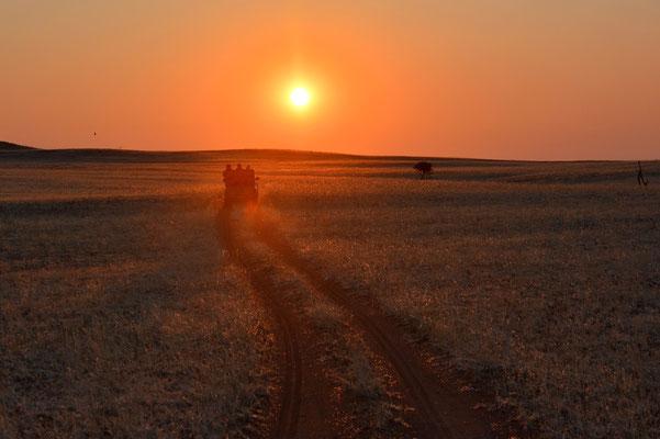 Namibia - Rundfahrt - Reise - Rundreise - Landschaft - Namib Naukluft Park - Sonnenuntergang