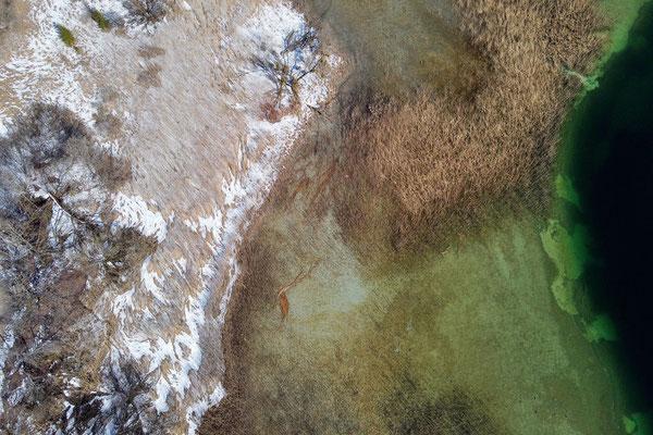 Vogelperspektive, Drohnenfoto, Landschaft, Drohnenbild, Schattenspiel, Luftaufnahme, Schilf, Grün, Weiss, Ufer, Streifen, See, Schnee, Muster