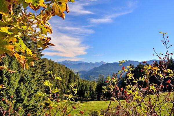 Bayern, Alpen, Wanderung, Landschaft, Aussicht, Blomberg