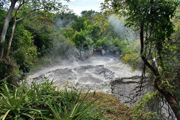 Pura Vida - Costa Rica - Rincon de la Vieja -