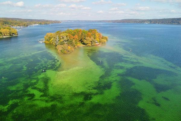 Drohnenfoto - Vogelperspektive - Drohne - Drohnenbild - Luftaufnahme - Formationen - Muster - Insel - Starnberger See - Sommer
