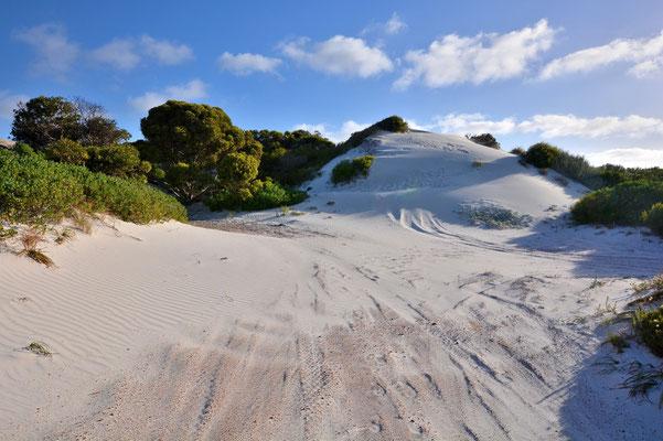 Australien, Australia, Westaustralia, Western Australia, Landschaft, Felsen, Wanderung, Meer, Weisser Sanddünen, Lake Wheatfield