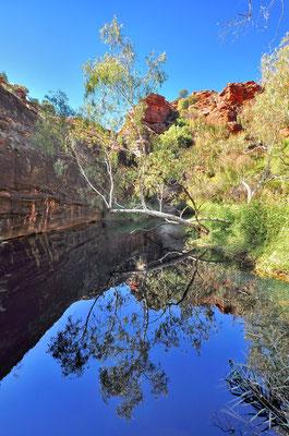Australia - Australien -Zentralaustralien - Outback - Northern Territory - Landschaft - See - Spiegelung - Kathleen Springs Walk
