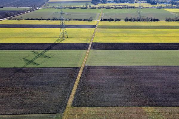 Vogelperspektive, Drohnenfoto, Drohnenbild, Luftaufnahme, Feld, Grün, Braun, Gelb, Parzellen, Streifen, Flecken, Sommer, Acker