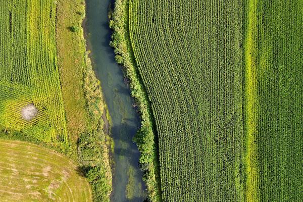 Drohnenfoto - Vogelperspektive - Drohne - Drohnenbild - Luftaufnahme - Fluss - Niederwörth - Sempt