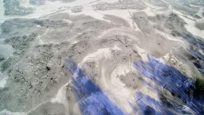 Vogelperspektive, Drohnenfoto, Drohnenbild, Schattenspiel, Luftaufnahme, Bayern, Feld, Weiss, Grün, Streifen, Bäume, Schatten, Muster, Flecken, Schnee, Winter