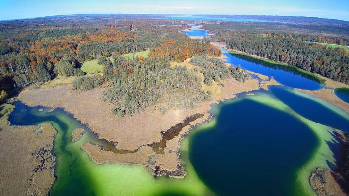 Drohnenfoto - Vogelperspektive - Drohne - Drohnenbild - Luftaufnahme - See - Bunt - Farbenfroh - Sommer