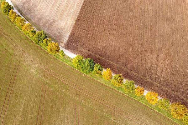 Vogelperspektive, Drohnenfoto, Drohnenbild, Luftaufnahme, Bayern, Feld, Bäume