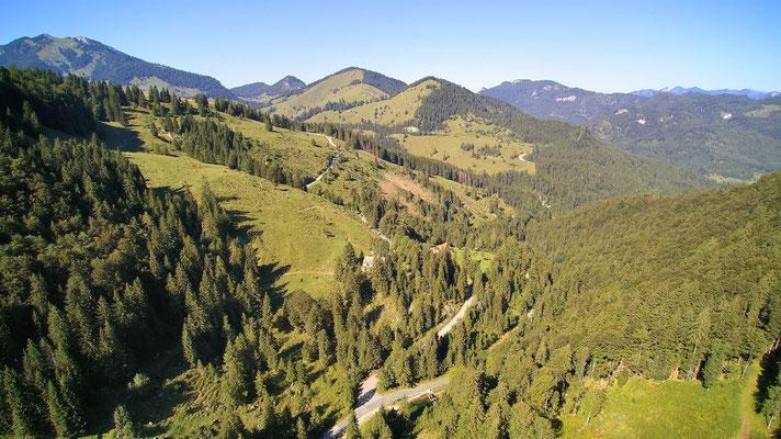 Vogelperspektive, Drohnenfoto, Drohnenbild, Luftaufnahme, Bäume, Wald von oben, Berge, Alpen
