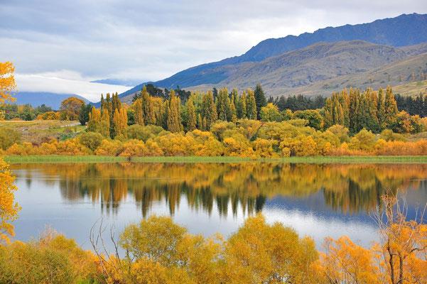 Neuseeland, Südinsel, See, Queenstown, Herbst