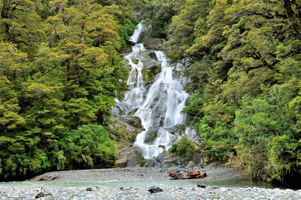 Neuseeland, Südinsel, Wasserfall, Wald, Regenwald, Fantail Falls