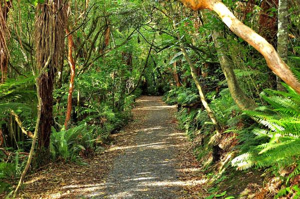Neuseeland, Südinsel, Matai Falls